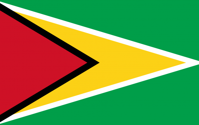 Image of flag of Guyana