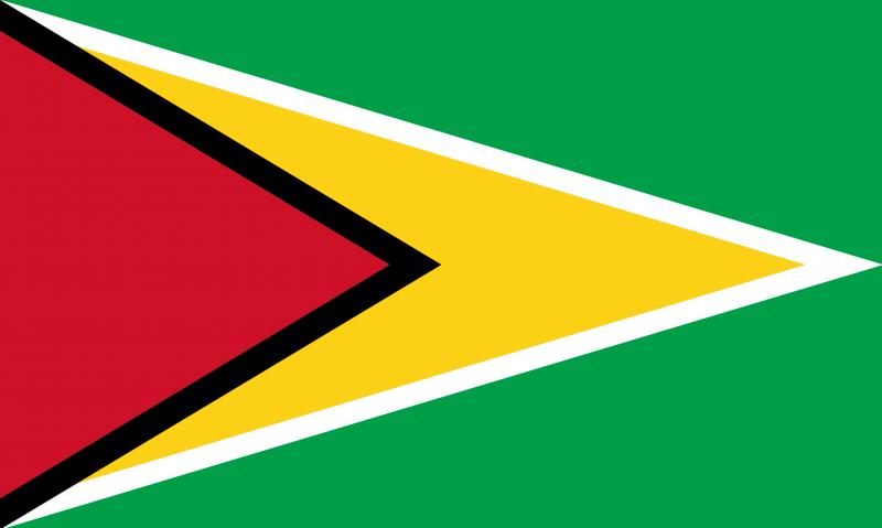 Image of flag of Guyana